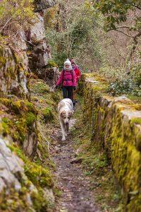 Turismo rural, la opción más saludable.